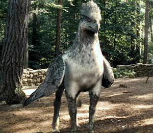 hippogriff_standing